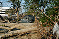 FEMA - 18547 - Photograph by George Armstrong taken on 11-03-2005 in Mississippi.jpg