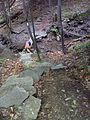 FLT M08 4.7 mi - Puncheon, 8' long, 3 4x4s on 6x6 sills, on rock gabions, also ~40 steps both sides - panoramio.jpg