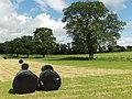 Farmland, Strageath - geograph.org.uk - 199865.jpg