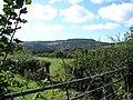 Farmland ar Trawsgoed Bach - geograph.org.uk - 256336.jpg