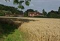 Farmland at Wokefield - geograph.org.uk - 942351.jpg