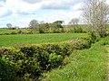 Farmland round Barwhirran - geograph.org.uk - 435081.jpg