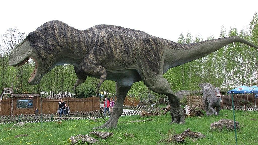 Feathered Tyrannosaurus model