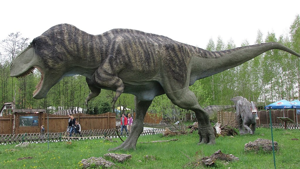 File feathered tyrannosaurus wikimedia commons for Tyranosaurus rex