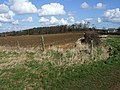 Field View near Potsgrove Lodge - geograph.org.uk - 370529.jpg
