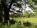 Fields over to Gellihen - geograph.org.uk - 1357165.jpg