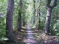 Fietspad door het landgoed van de Coenderborg - panoramio.jpg
