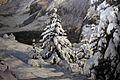 Filippo carcano, in pieno inverno (inverno in engadina), 1909, 03.JPG