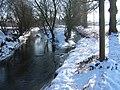 Fischbachmuendung im Winter.jpg
