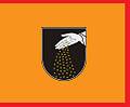 Flag of Ginkūnai.jpg