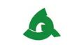 Flag of Tara Saga.png