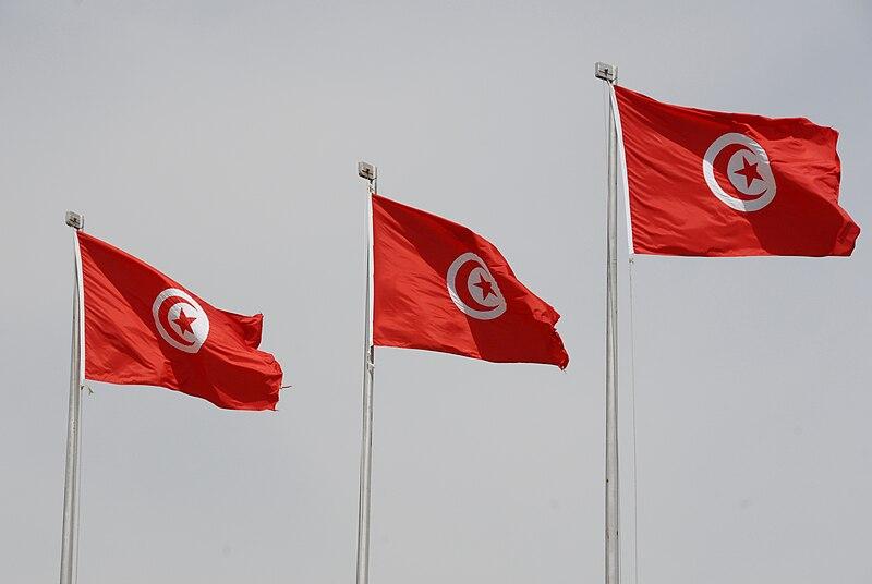 Вновь избранный президент Туниса заявил, что