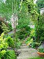Flickr - brewbooks - Our Garden - May, 2008 (5).jpg