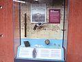 Flickr - davehighbury - Bovington Tank Museum 017.jpg