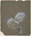 Floral Design MET DP805167.jpg
