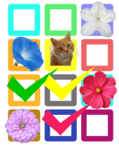 Flower check sheet 3.png