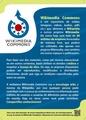 Flyer Wikicommons Frente PT.pdf
