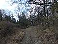 Foce del Frugnolo - panoramio (1).jpg