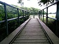 Footbridge across Burstow Stream - geograph.org.uk - 200564.jpg