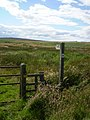 Footpath - geograph.org.uk - 498701.jpg