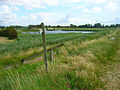 Footpath Junction, Pagham Wall - geograph.org.uk - 501459.jpg