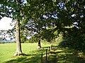 Footpath North-east of Woodlands Farm - geograph.org.uk - 227511.jpg