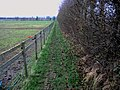 Footpath linking with The Stour Valley Walk - geograph.org.uk - 646224.jpg