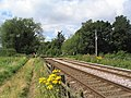 Footpath to Frisby crossing railway line - geograph.org.uk - 523683.jpg