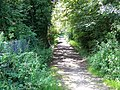 Footpath to Sherrington - geograph.org.uk - 953275.jpg