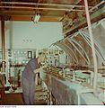 Fotothek df n-17 0000068 Facharbeiter für Anlagentechnik.jpg