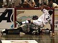 France-Portugal 2007 rink hockey world championship.jpg