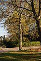 Frankfurt-Praunheim A19.jpg