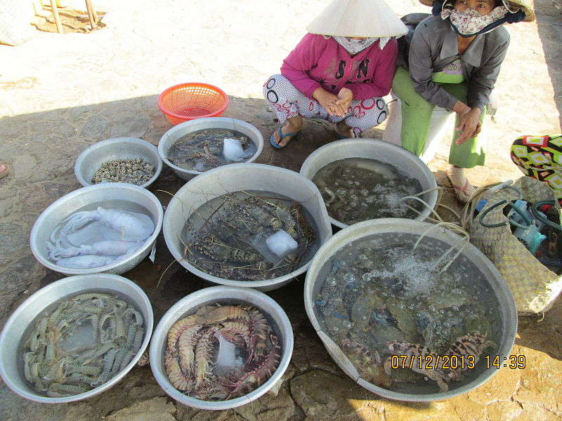 File:Fresh live sea-food sold in Mui Ne.JPG
