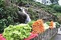 Fresh vegitables - panoramio.jpg