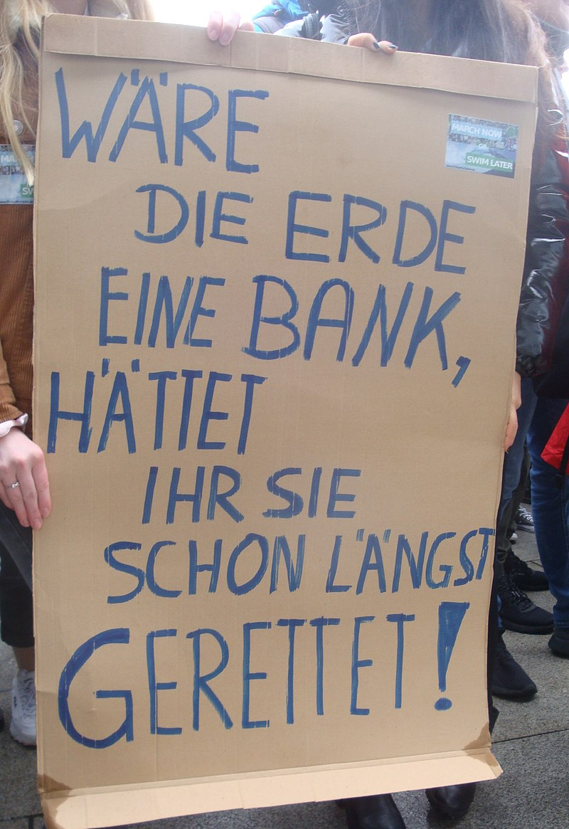 Fridays for Future Aschaffenburg 15.03.2019 25.jpg