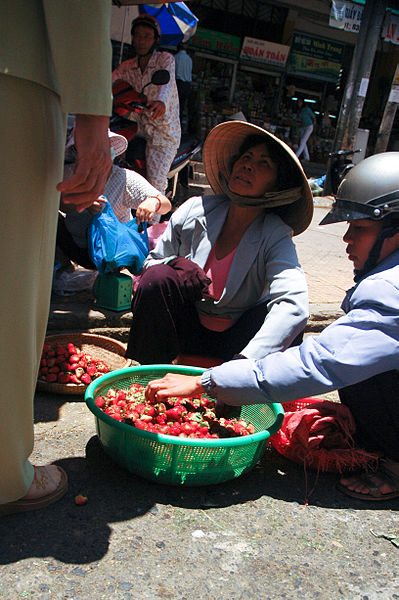 File:Fruit vendors in Da Lat 2.jpg