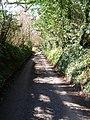 Furners Lane - geograph.org.uk - 145206.jpg