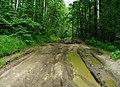 G. Miass, Chelyabinskaya oblast', Russia - panoramio (123).jpg