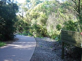 Great North Walk - The Great North Walk at Pennant Hills