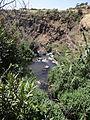Gamla Nature reserve (36).JPG