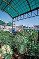 Garak-dong Agricultural Market (4440381874).jpg