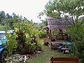 Garden in Lipa Noi - panoramio.jpg