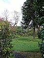 Garden in Rossendale, Lancashire, England 2007.jpg