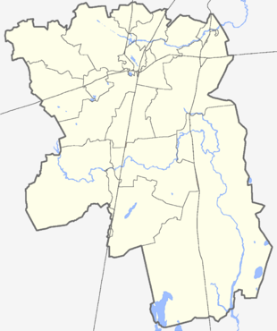 Гатчина (Гатчинский район)