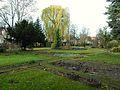 Gdańsk aleja Hallera 107 – Ogród Roślin Leczniczych GUMed.JPG