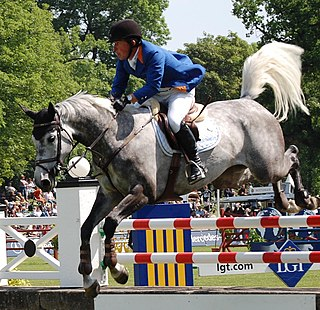 Gerco Schröder Dutch equestrian