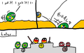 Germany beats Brazil beach volleyball (Polandball).png