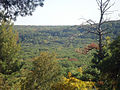 Gfp-wisconsin-devils-lake-state-park-view-of-mountainside-from-top.jpg