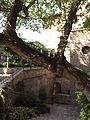 Giardini Pensili, veduta generale.jpg