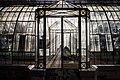 Giardino Inglese, Palermo - Luci di Serra - Foto di Cristiano Drago.jpg